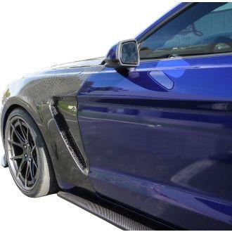 Anderson Composites Carbon Kotflügel für Ford Mustang GT350