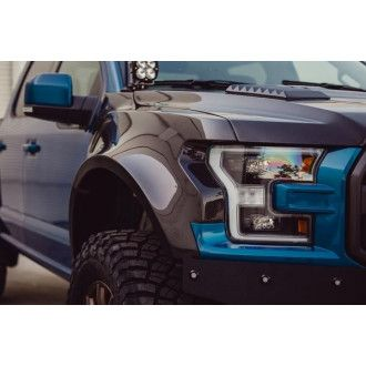 Anderson Composites Carbon Kotflügel Widebody für Ford F150 Raptor 2017-2018