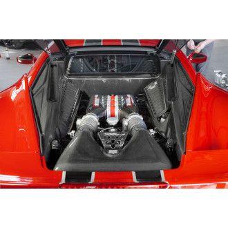 Capristo Carbon Motorverkleidung für Ferrari 458 Speciale Italia