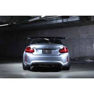 3DDesign carbon rear wing for BMW F87 M2 - Alu Legs extension