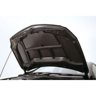 Varis carbon Cooling System bonnet 1 Mercedes Benz W176 A45 AMG